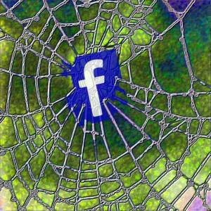 facebook-Spinnennetz symbolisch